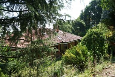Villa con giardino su quattro lati tre ingressi su strada divisibile in due appartamenti vendiamo